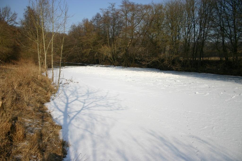 Eiswinter-Feb.-2012-003