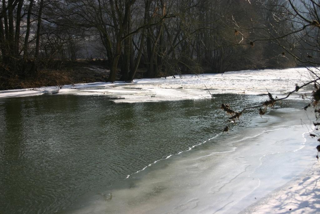 Eiswinter-Feb.-2012-006